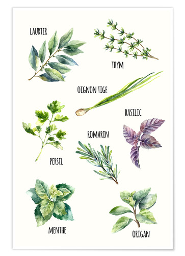 Premium poster Spices - French
