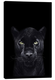 Canvas print  Black panther on a black background - Valeriya Korenkova