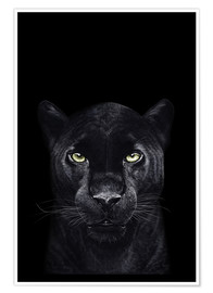 Premium poster  Black panther on a black background - Valeriya Korenkova