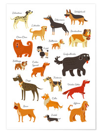 Premium poster  Dogs in all sizes - Kidz Collection