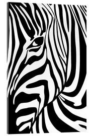 Acrylic print  Black And White Zebra Portrait - Radu Bercan