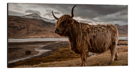 Art Couture - Highland cattle in the highlands