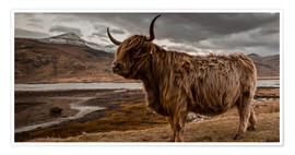 Poster  Highland cattle - Art Couture