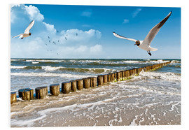Forex  Seagulls, Sylt - Art Couture