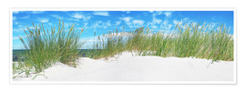 Premium poster  Panorama of Dunes, Baltic Sea - Art Couture