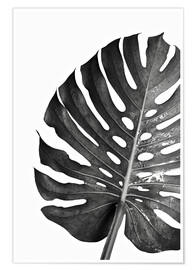Premium poster Black monstera 03
